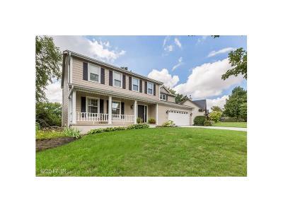 West Des Moines Single Family Home For Sale: 5100 Boulder Drive