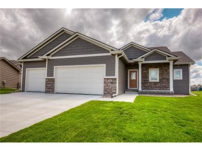 Ankeny Single Family Home For Sale: 1404 NW Pine View Circle