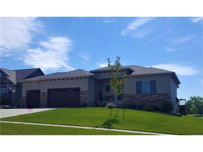 Ankeny Single Family Home For Sale: 4007 NE Bellagio Circle