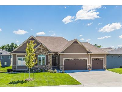 Ankeny Single Family Home For Sale: 911 NW Cypress Avenue