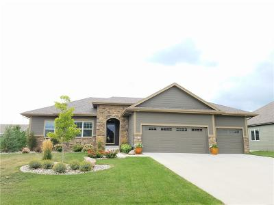 Ankeny Single Family Home For Sale: 4912 NE Rio Drive