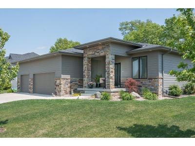 West Des Moines Single Family Home For Sale: 889 65th Street
