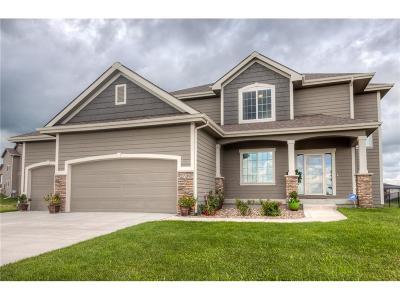 Ankeny Single Family Home For Sale: 2709 NW Abilene Road