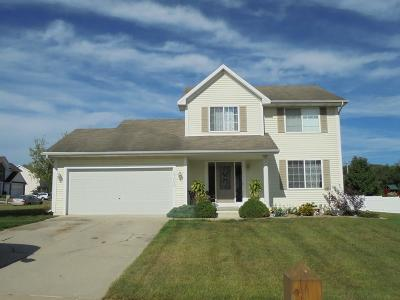 Des Moines Single Family Home For Sale: 5300 31st Street