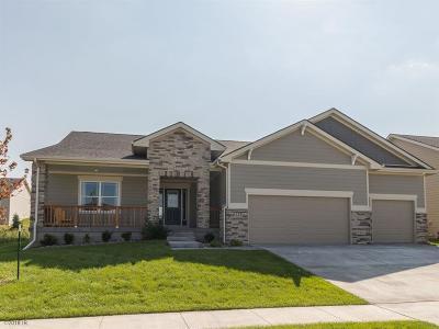 West Des Moines Single Family Home For Sale: 1172 S Radley Street