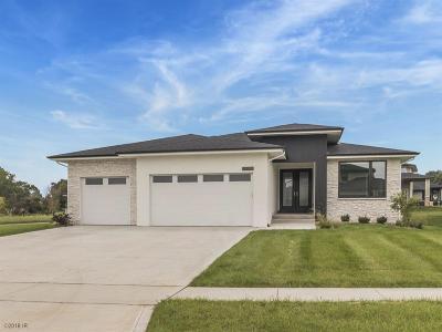 West Des Moines Single Family Home For Sale: 8385 Aspen Drive