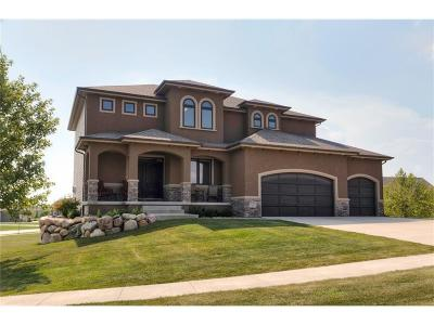Urbandale Single Family Home For Sale: 16102 Dellwood Drive