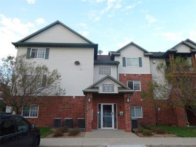 West Des Moines Condo/Townhouse For Sale: 6440 Ep True Parkway #3206