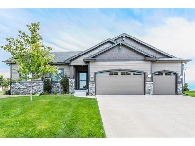 West Des Moines Single Family Home For Sale: 8202 Sky View Circle