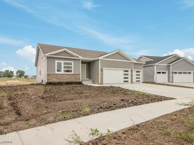 Des Moines Single Family Home For Sale: 5387 Brook Landing Drive