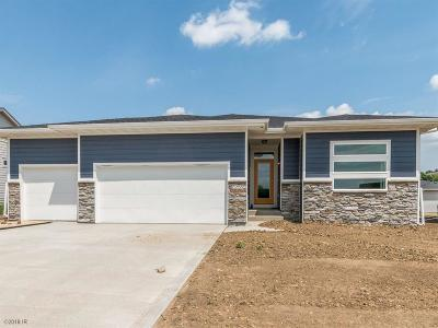 Ankeny Single Family Home For Sale: 7255 NW 18th Street