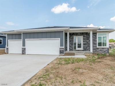 Ankeny Single Family Home For Sale: 7247 NW 18th Street