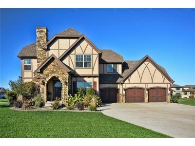 Ankeny Single Family Home For Sale: 3212 NE Briar Creek Place
