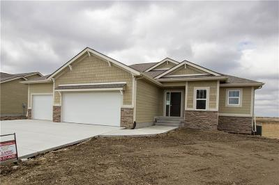 Ankeny Single Family Home For Sale: 4206 NW Applewood Street