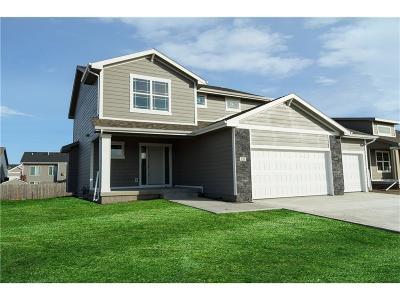 Bondurant Single Family Home For Sale: 226 7th Street NE