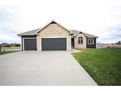 Ankeny Single Family Home For Sale: 527 SW Carriage Court