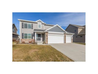 West Des Moines Single Family Home For Sale: 8263 Sky View Circle