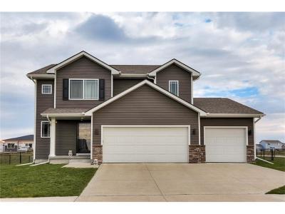 Bondurant Single Family Home For Sale: 300 Aspen Drive NW