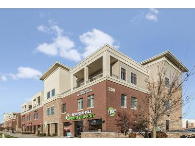 West Des Moines Condo/Townhouse For Sale: 230 S 68th Street #1306