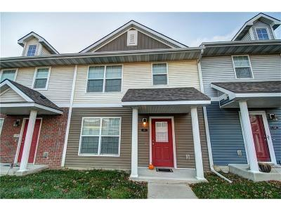 West Des Moines Condo/Townhouse For Sale: 9065 Greenspire Drive #111