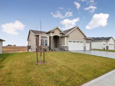 Ankeny Single Family Home For Sale: 2918 NW Abilene Road
