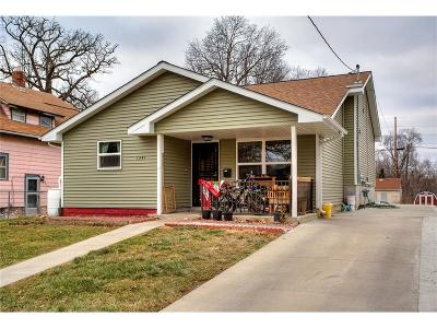 Des Moines Single Family Home For Sale: 1341 Norton Avenue