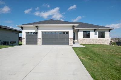 Urbandale Single Family Home For Sale: 16243 Horton Circle