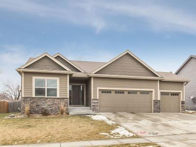 Adel Single Family Home For Sale: 1404 S 13th Street