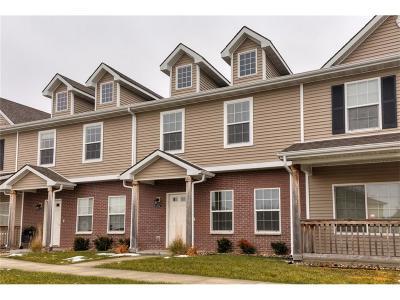 Ankeny Multi Family Home For Sale: 4516 NE Milligan Lane