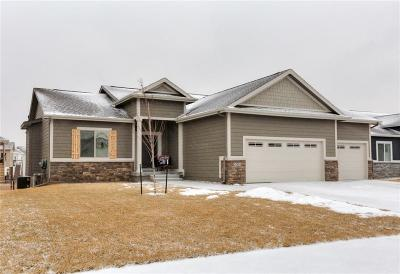 Ankeny Single Family Home For Sale: 2005 NW Reinhart Drive