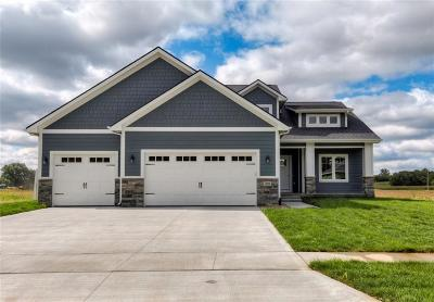 West Des Moines Single Family Home For Sale: 11050 Brookdale Drive