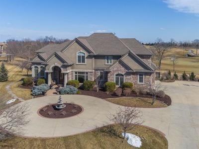 Ankeny Single Family Home For Sale: 2817 NE Seneca Drive