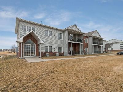 Waukee Condo/Townhouse For Sale: 1325 SE Florence Drive #207