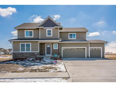 Ankeny Single Family Home For Sale: 2605 NW 40th Street