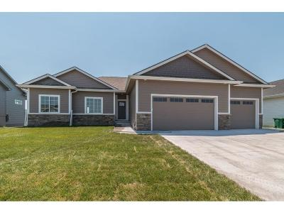Ankeny Single Family Home For Sale: 2419 NW 40th Street