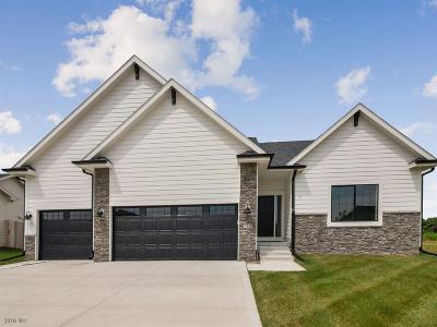 Waukee Single Family Home For Sale: 710 NE Badger Lane