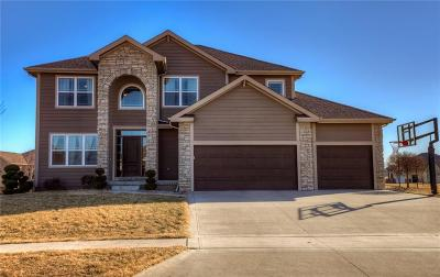 Ankeny Single Family Home For Sale: 503 NE 43rd Court