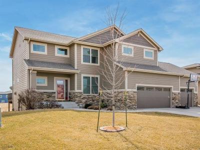 Ankeny Single Family Home For Sale: 1215 NE 47th Street