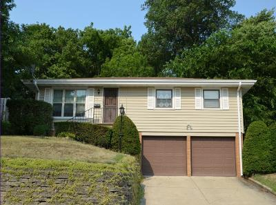 Des Moines Single Family Home For Sale: 4124 8th Street