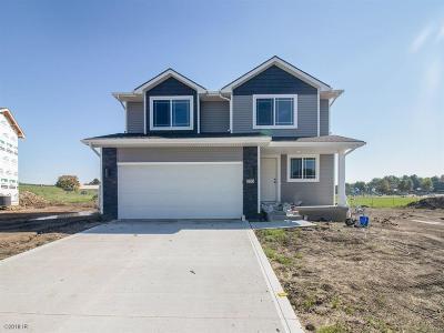 Altoona Single Family Home For Sale: 205 19th Avenue SW