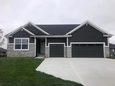 Ankeny Single Family Home For Sale: 3013 NE 17th Street