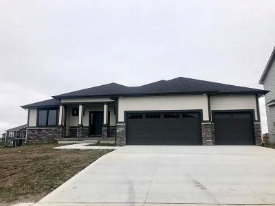 Ankeny Single Family Home For Sale: 1616 NE Meadow Court