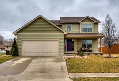 Adel Single Family Home For Sale: 1407 Linden Circle