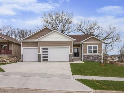 Des Moines Single Family Home For Sale: 4707 Wisconsin Avenue