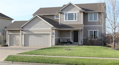 Johnston Single Family Home For Sale: 9725 Ashton Drive