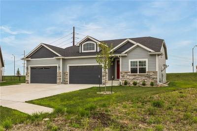 Ankeny Single Family Home For Sale: 2510 NE 17th Street