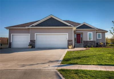 Ankeny Single Family Home For Sale: 4312 SW Maple Court