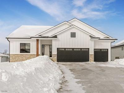 Ankeny Single Family Home For Sale: 7272 NW 18th Street
