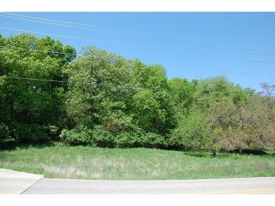 West Des Moines Residential Lots & Land For Sale: 1733 S 35th Street