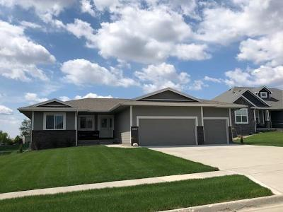 Ankeny Single Family Home For Sale: 5104 NE Bellagio Court